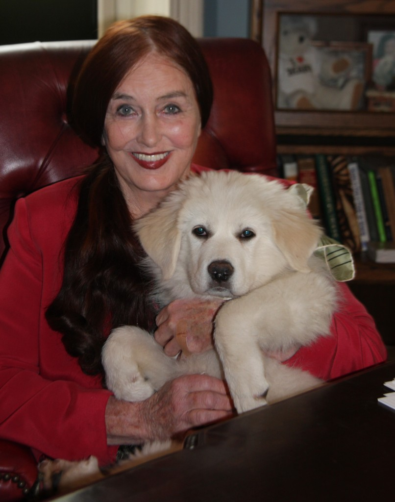 Lawyer Mary Mcknight